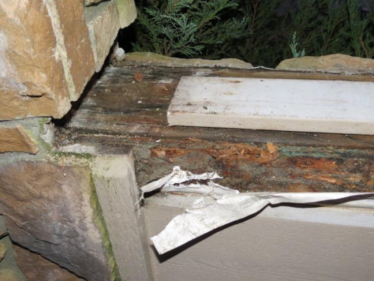 Fixing some dry rot