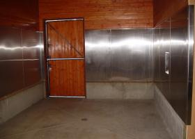 Stainless Horse Shoeing Area